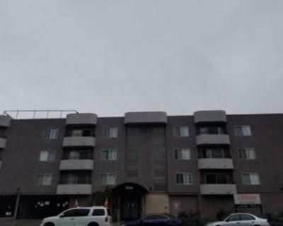 Laurel Canyon Blvd, Los Angeles, CA 91604 1 Bedroom Apartment