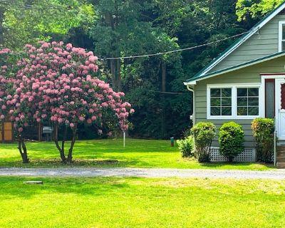 Creekside Cottage Next to Knoebels Amusement Resort. Large Yard, Fire Pit, Patio - Catawissa