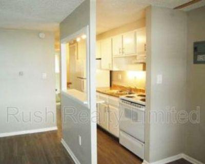 1245 N Lafayette St #2ndFLUNIT, Denver, CO 80218 1 Bedroom Condo