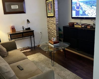 Supafly Cottage in Heart of Miami! 1 Bedroom Apartment and Pet Friendly - Coral Way