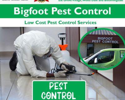 Termite Inspection Elmhurst