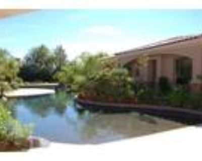 Tropical surroundings in Paradise Valley
