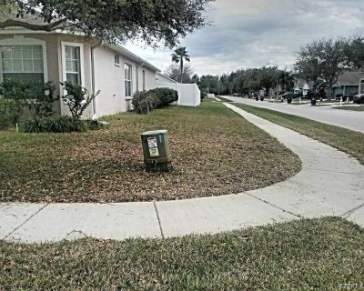 Grass cutting services in Tampa Citrus Park Carrollwood.