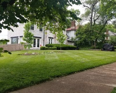 Commercial Lawn Care and Landscaping in St Louis Area