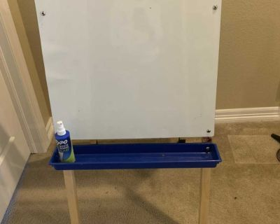 Wipe Baird and chalkboard easel