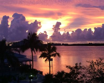 Tropical Island Getaway with Impecable Beauty and Wildlife! State park walking - Fort Myers Beach