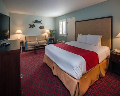 KL - Luxury Room, 1 King Bed with Sofabed - Morro Bay