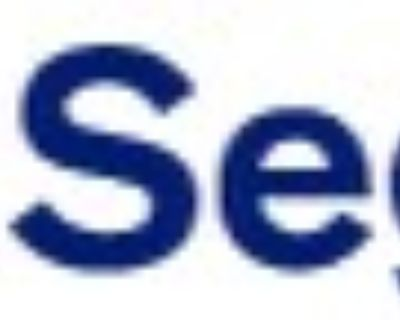 Pension Analyst