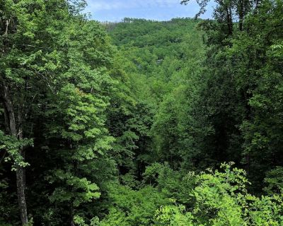 Want to feel like your Up In The Trees!! What a Great View :) - Gatlinburg