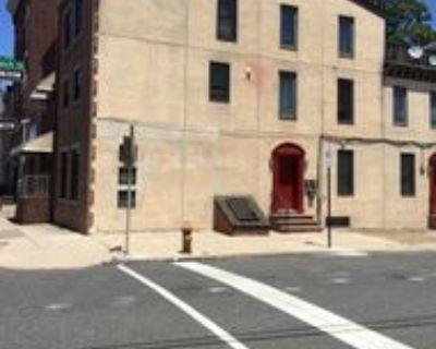 1515 E Moyamensing Ave #1, Philadelphia, PA 19147 1 Bedroom House