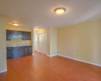 1001 Louisiana Blvd Ne #68, Albuquerque, NM 87110 Studio Apartment