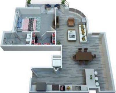 800 N Central Ave, Phoenix, AZ 85004 1 Bedroom Apartment
