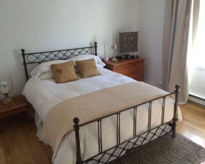 Children Welcome. 2 Bedroom Spacious Apartment Facing A Great Park. - Rosemont-La Petite-Patrie