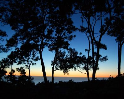 Ocean Sunset Cottage - Lodge Hill