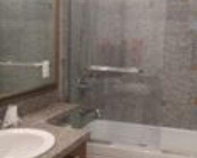 4529 Napier Street #basement, Burnaby, BC V5C 3H4 2 Bedroom Apartment
