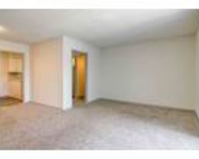 River Crossing at Roswell - 2 Bed 2 Bath A - Renovated