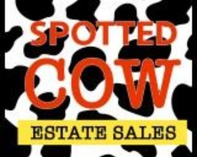 Spotted Cow will be in Waterford Chase