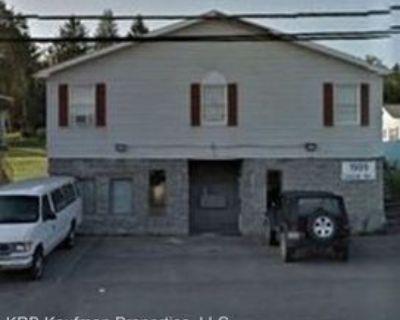 1909 Locust Ave #3, Fairmont, WV 26554 Studio