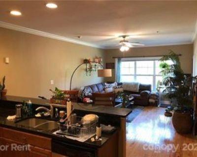 175 S Lexington Ave #302, Asheville, NC 28801 1 Bedroom Apartment