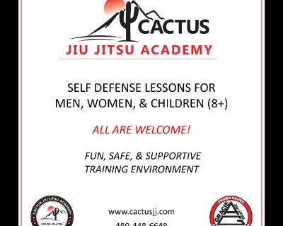 Brazilian Jiu Jitsu / Practical Self Defense