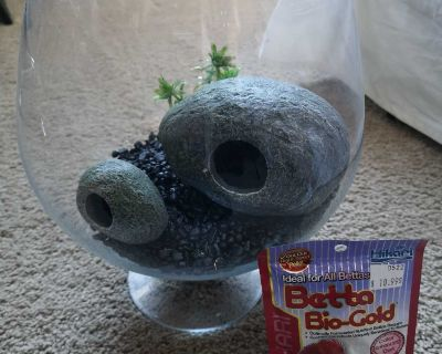 Fish bowl, food, rocks and pieces