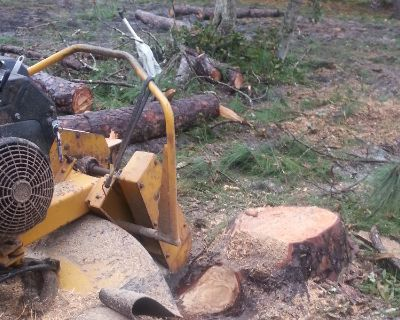 Tree Stump Removal, Tree Trimming, Yard Clean up
