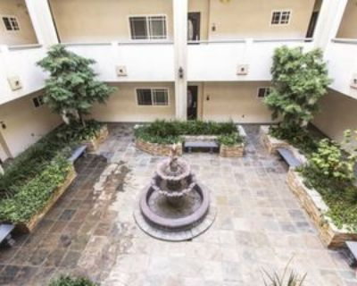 1043 S Kenmore Ave #505, Los Angeles, CA 90006 2 Bedroom Apartment