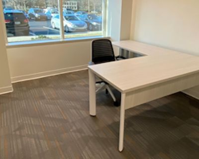 Private Office for 2 at Office Evolution - Johns Creek