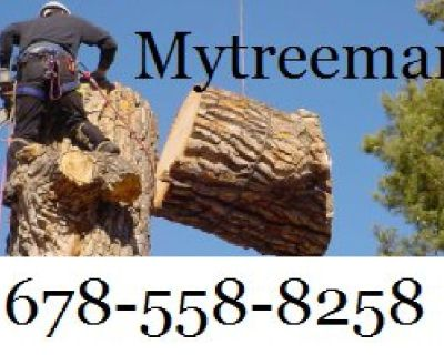 AFFORDABLE CUTS TREE SERVICE. (678)558-8258 mytreeman.com