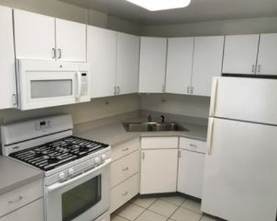 8042 Knox Avenue #3A, Skokie, IL 60076 2 Bedroom Apartment