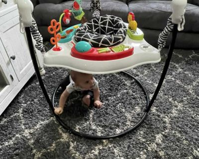 Fisher Price Activity Bouncer