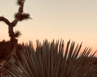 5 Acre Rustic Desert Location with Boho Cabana for Outdoor Fashion / Lifestyle Photography, Littlerock, CA