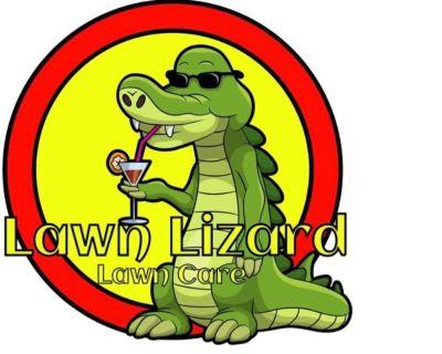 Lawn Lizard Lawn Care