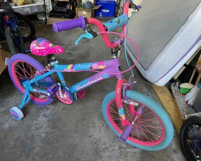 Girls 18 bike