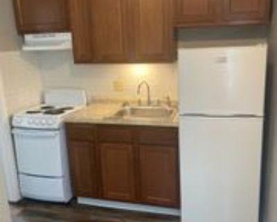 900 14th Street Northwest - 102 #102, Austin, MN 55912 Studio Apartment