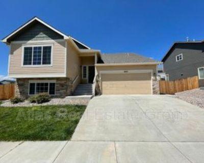 7063 Red Cardinal Loop, Colorado Springs, CO 80908 5 Bedroom House