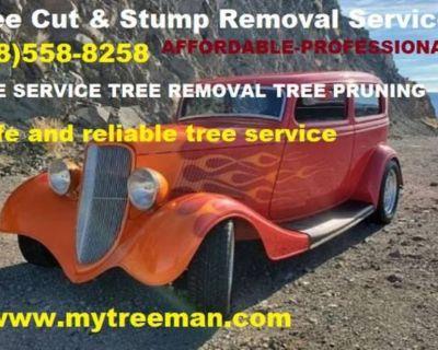 TREE SERVICES Tree Service Removal Atlanta Georgia - Tree Services Atlanta Ga. Removal Tree Services