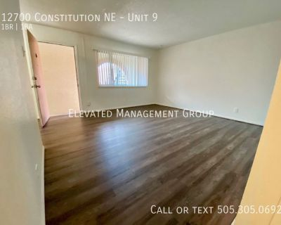 Newly Remodeled Unit in the NE Heights!