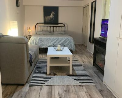 Basement Studio Apartment with Private Washroom and Backyard - Brampton