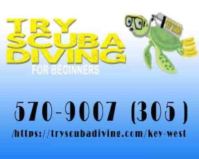 Try Scuba Diving – Key West