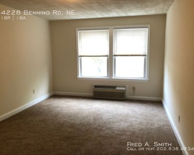 One Bedroom Apartment On Benning Road Available Now!