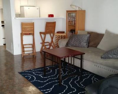 Seeking Roommate; Private Room in 3BR Apt; Available Nov 1 (Lincoln Heights)