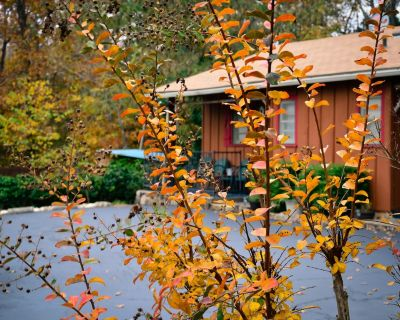 Cabin 2-bdrms with Pool and Boat Dock Access on Norfork Lake, Arkansas - Mountain Home