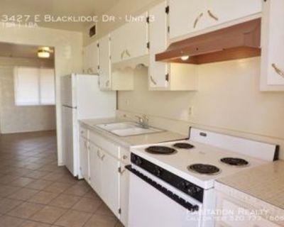 3427 E Blacklidge Dr #3, Tucson, AZ 85716 1 Bedroom Apartment