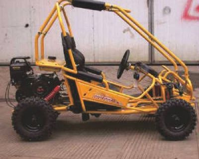 Small Youth Double Seat Go Karts