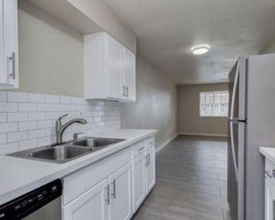 402 S Beck Ave #3, Tempe, AZ 85281 1 Bedroom Apartment