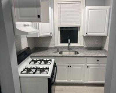 113 Harrischoff #1, Boston, MA 02121 3 Bedroom Apartment