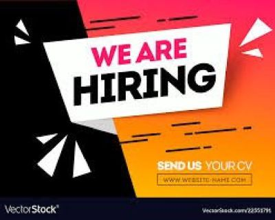 WANTED IT & SOFTWARE DEVELOPERS