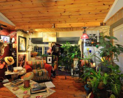 Bohemian Artsy Home in Cartersville, Cartersville, GA