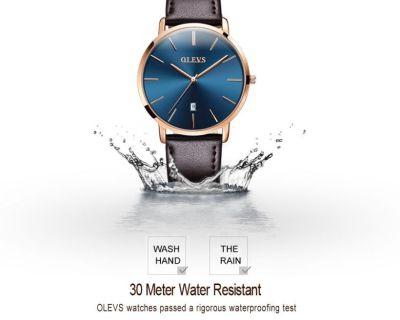 Olev Watch